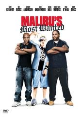 Malibu's Most Wanted Filmplakat