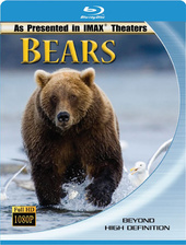 IMAX: Bears Filmplakat