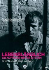 Lebenslänglich - Ein Alptraum hinter Gittern Filmplakat