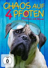 Chaos auf 4 Pfoten - Sommer mit Hund Filmplakat
