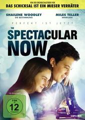 The Spectacular Now - Im Hier und Jetzt Filmplakat