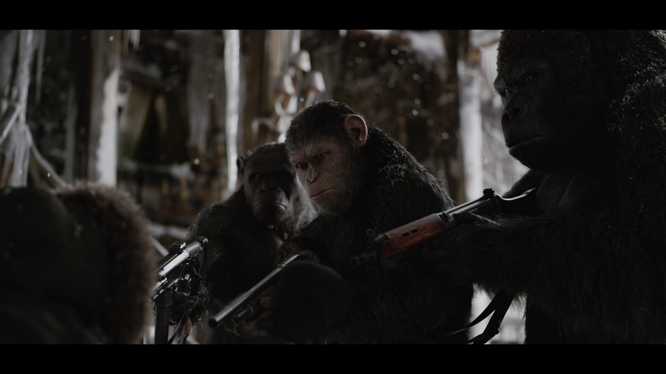 Planet der Affen: Survival War for the Planet of the Apes, Kinostart 03.08.2017, USA 2017, 3D