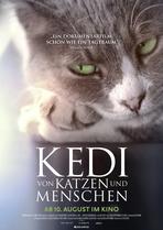 Kedi - Von Katzen und Menschen - Filmplakat