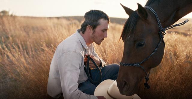 The Rider Filmbild Bild-1