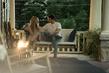 Forever My Girl Filmbild 986965