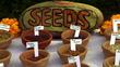 Unser Saatgut - Wir ernten, was wir säen Filmbild 990007