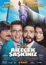 Ailecek Saskiniz - Filmplakat
